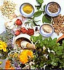 Organic Ayurvedic Medicinal Garden Collection.